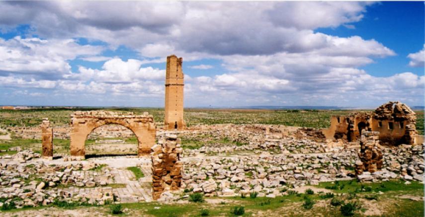 Harran Ulu Camii Restore Ediliyor