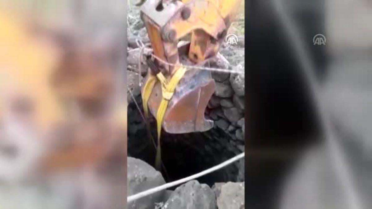 Su kuyusuna düşen boğa kurtarıldı - ŞANLIURFA