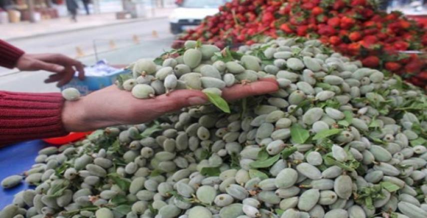 Urfa'da Badem Çağlası Çıktı!